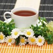 Cup of tea with herbs and daisies — Stock Photo #4380076