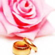 Two wedding rings and pink rose at the background — Stock Photo