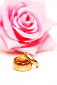 Two wedding rings and pink rose at the background — Стоковое фото