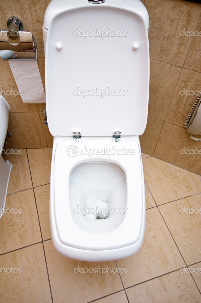 Toilet in the bathroom  — Stock Photo #4415681