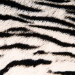 Imitation of tiger leather as a background — Stock Photo #4421421