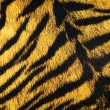Imitation of tiger leather as a background — Stock Photo #4422869