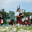 Marching scottish band marchin on grass — Stock Photo