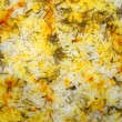 Seasoned rice with herbs and saffron - Stock Photo