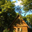 Stock Photo: Wooden house in forest in summer