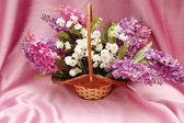 Basket of lilac flowers on lilac background — Stock Photo