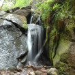 A waterfall and a moss-grown stone - Stockfoto