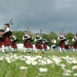 Scottish Pipe Band marching on the grass - Stock Photo