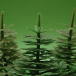 Three fir trees on green background — 图库照片