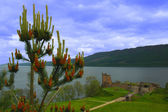 Urquhart Castle, Loch Ness, Scotland — Stock Photo