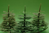 Three fir trees on green background — Photo