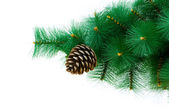 Christmas tree isolated on the white background — Stock Photo