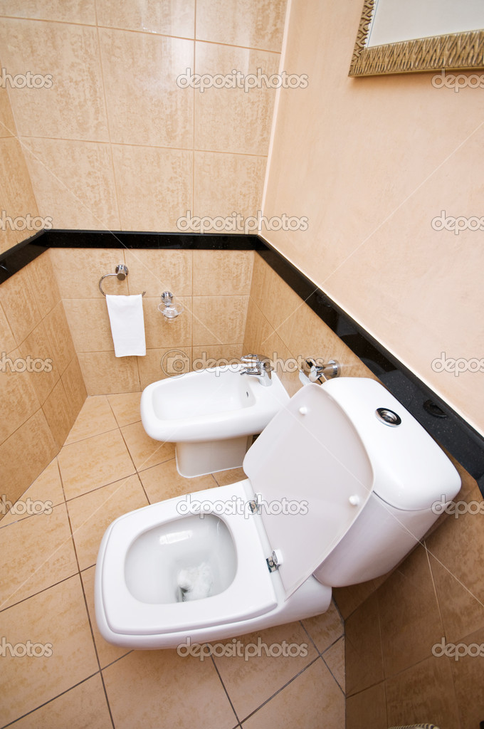 Toilet in the bathroom  — Stock Photo #4469322