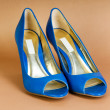 Fashion concept with blue woman shoes on high heels — Stock Photo #4522564