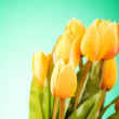 Bunch of tulip flowers on the table — Stock Photo #4524462