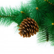 Christmas tree isolated on the white background — Stock Photo