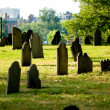 Cemetery with many tombstones on the bright day — Stock Photo #4535783
