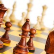 Set of chess figures on the playing board - Stock fotografie