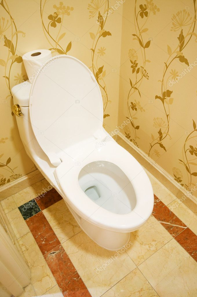 Interior of the room - Toilet in the bathroom  — Stock Photo #4562685