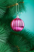 Christmas decoration on the tree - holiday concept — Stock Photo