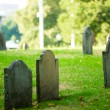 Cemetery with many tombstones on the bright day — Stock Photo #4586032