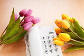 用电话和郁金香鲜花的浪漫概念 — 图库照片