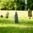 Cemetery with many tombstones on the bright day - Lizenzfreies Foto
