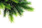Weihnachtsdekoration auf dem weißen hintergrund — Stockfoto