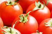Red tomatoes arranged at the market stand — Stock Photo