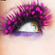 Womeyes with stylish eyelashes — Stock Photo #5163815