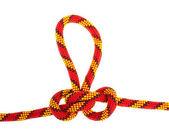 Ensemble de noeuds de corde — Photo
