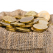 Stock Photo: Bag filled with coins.