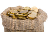 Sacchetto pieno di monete. — Foto Stock