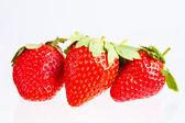 Berry of strawberry — Stock Photo