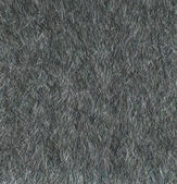 Futro wilka - 2 — Zdjęcie stockowe