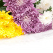 Bouquet of chrysanthemums — Stock Photo #4426421