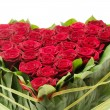 Red roses — Stock Photo #4440201
