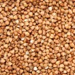 Buckwheat — Stock Photo #4742662