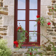 Window — Stock Photo #4876034