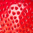 Macro strawberry — Stockfoto