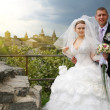 Wedding — Stock Photo #4809602