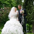Wedding — Stock Photo #4844604