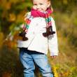 Toddler girl in autumn forest - Stock Photo
