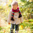 Royalty-Free Stock Photo: Toddler girl walking at autumn forest