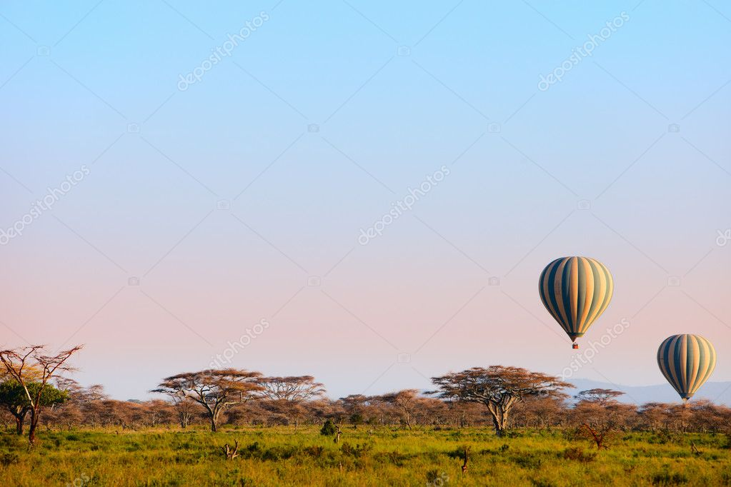 Early morning flight of hot balloon over Serengeti national park, Tanzania  Stock Photo #4166427