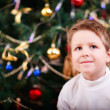 Royalty-Free Stock Photo: Christmas boy portrait