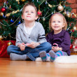 Brother and sister near Christmas tree — Stock Photo #4357855