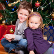 Two kids near Christmas tree — Stock Photo #4358194