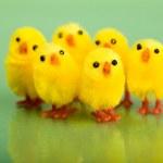 Happy Easter. — Stock Photo