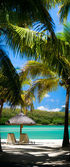 Paradis tropical — Photo